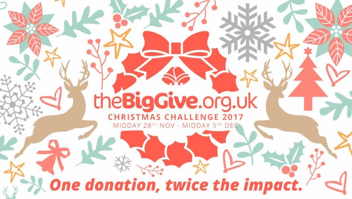 the-big-give-large