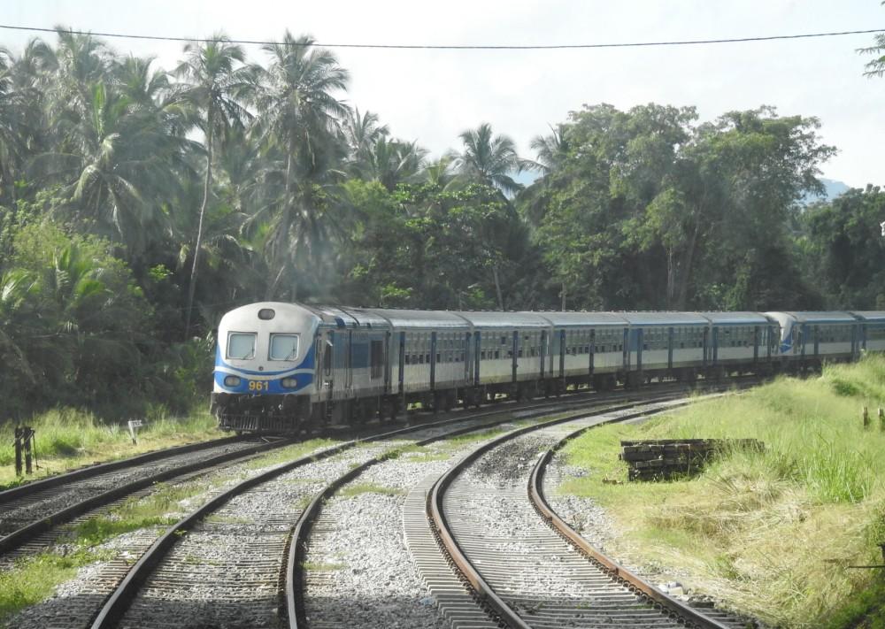 110-Northern_Line_-_Sri_Lanka_-_December_2019_(1)
