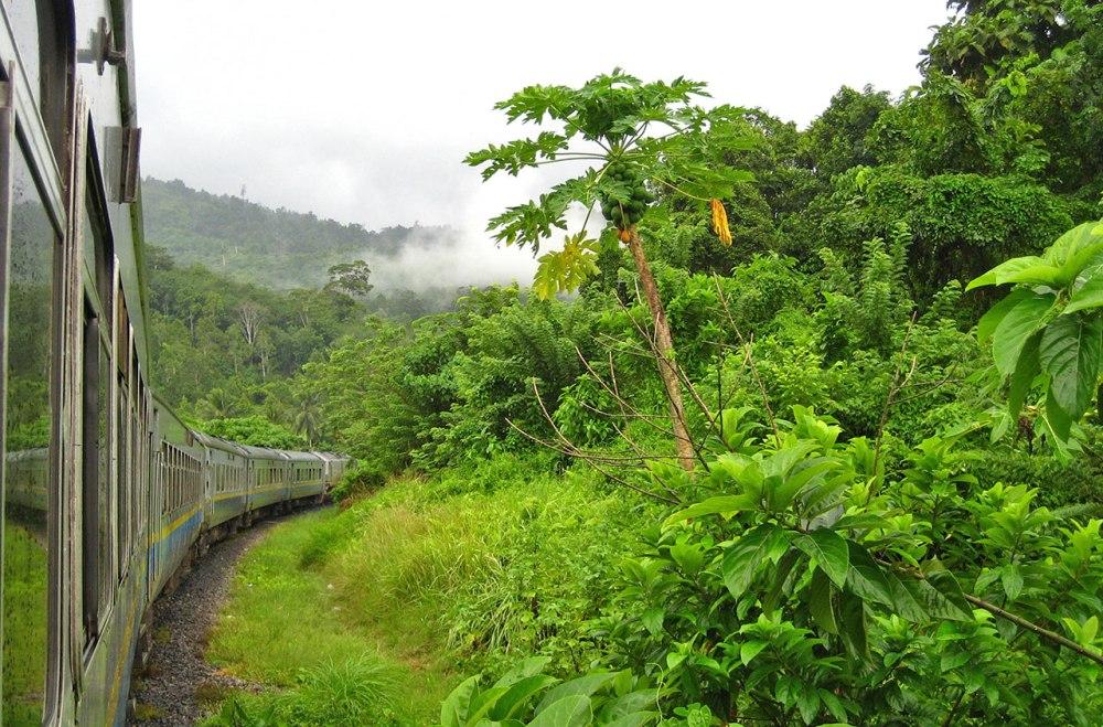 129-malaysia-ktm-jungle-train